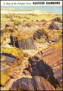 Agatized Rainbows: A Story of the Petrified Forest (Popular Series No. 3), image
