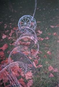 Spiral Polygonia, image