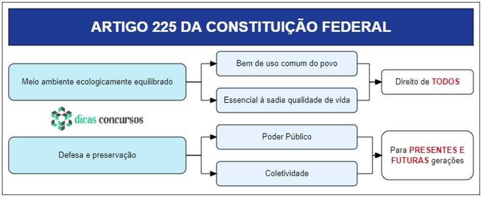 Art 225 da CF - Comentado