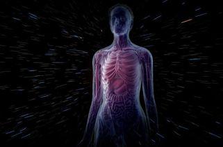 100 fatos incríveis que você não sabia sobre seu corpo