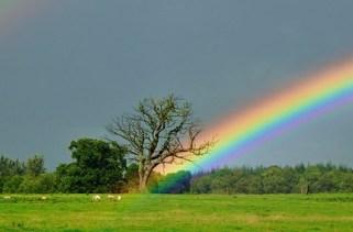 Fatos sobre arco-íris