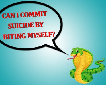 Uma cobra pode morrer de se morder?