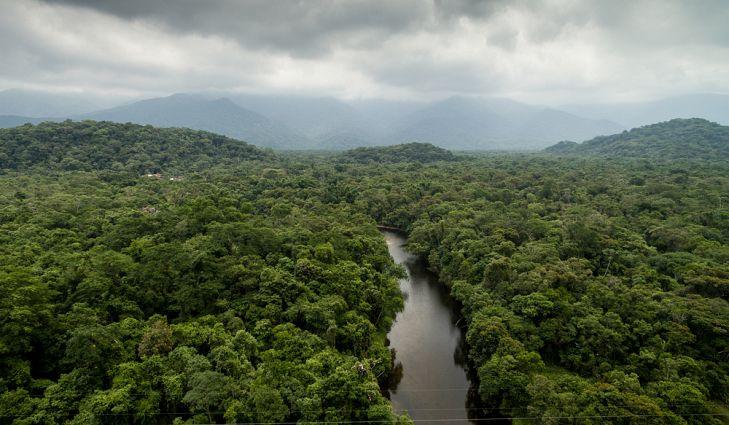 Quais São os Principais Recursos Naturais do Brasil?