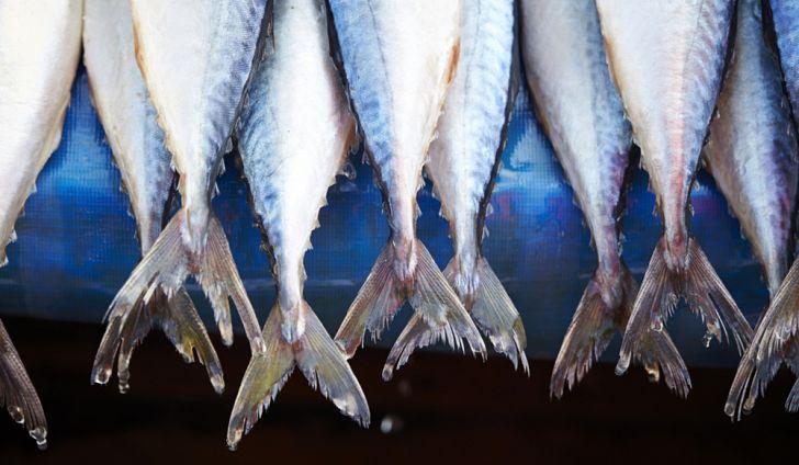 Países Que Mais Comem Peixes