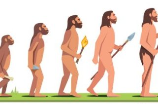 Neandertais vs Homo Sapiens: Diferentes espécies ou subespécies?