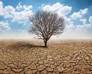 Como o aquecimento global contribui para a formação de zonas de águas mortas?