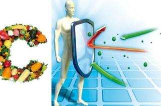 15 alimentos para fortalecem o sistema imunológico