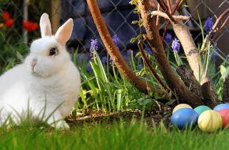 10 Diferentes maneiras de Comemorar a Páscoa em todo o mundo