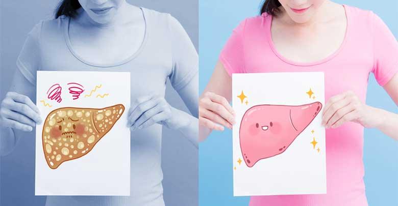 fígado gordo