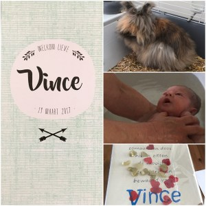 Baby Vince