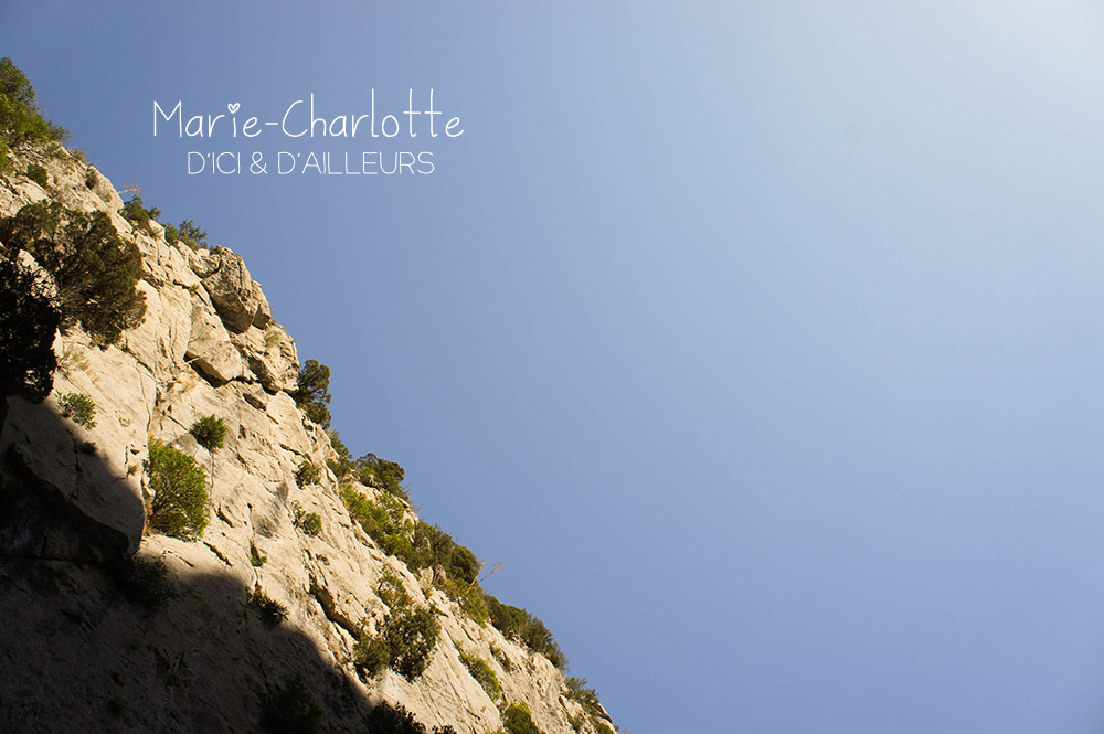 201208_dicidailleurs_pyrénées_orientales