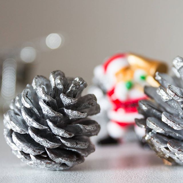 21decembre-pommedepin-fotograf