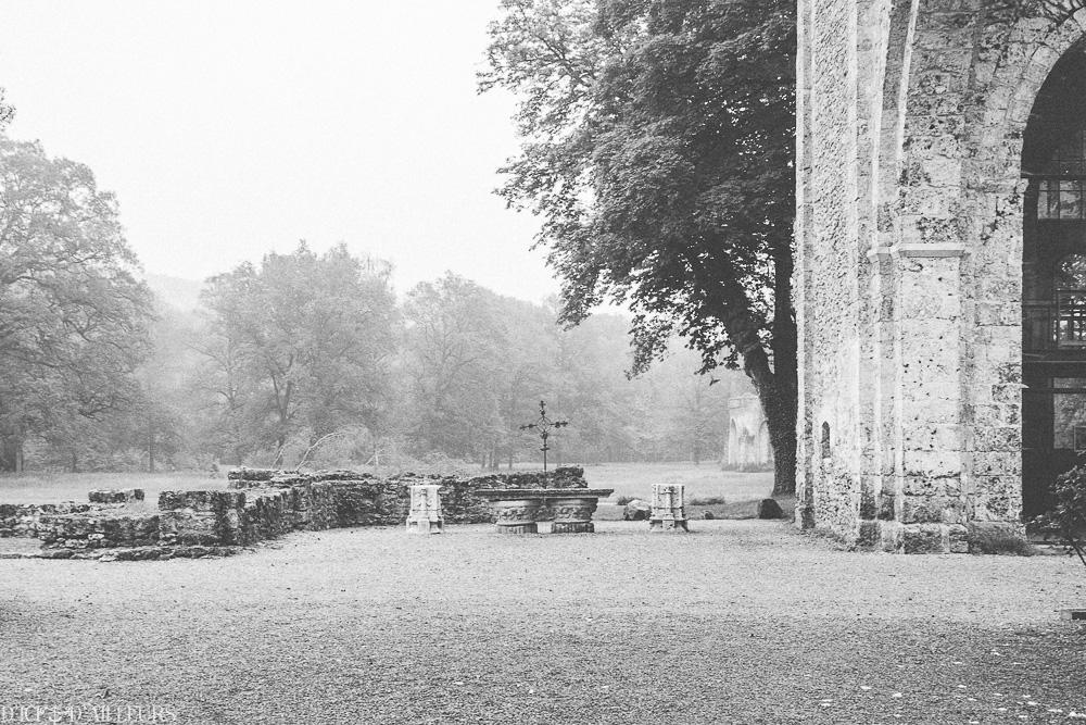 abbayedesvauxdecernay08