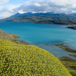 Lake Sarmiento, Torres del Paine, Chile