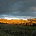 Sun on Hillside