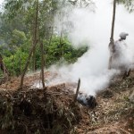 Because charcoal is the primary fuel for cooking, deforestation has become a major problem.
