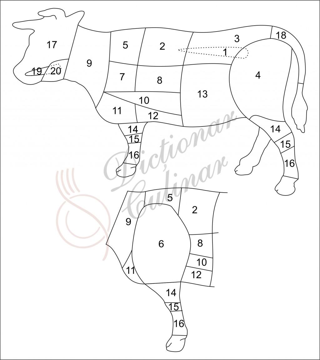 schemă tranșare carne de vită