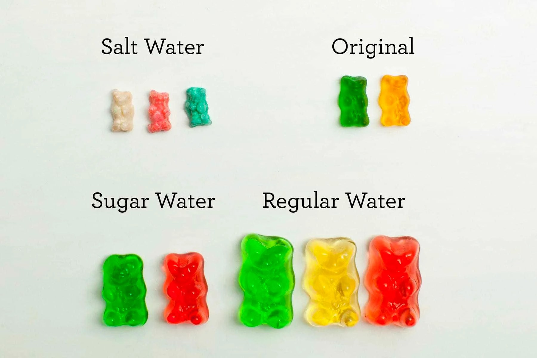 What Does Gummy Bear Mean