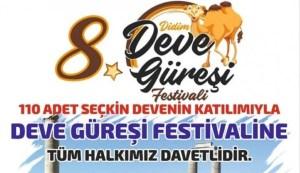 Didim Deve Güreşi Festivali
