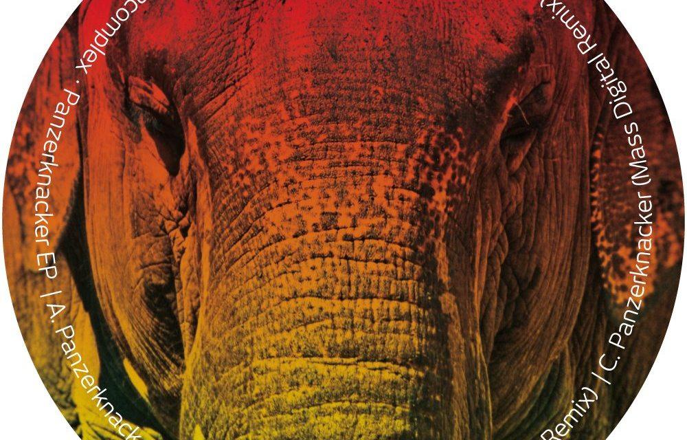 https://i1.wp.com/www.didrec.com/wp-content/uploads/2011/01/DIDREC008_elephant1.jpg?resize=1000%2C640&ssl=1