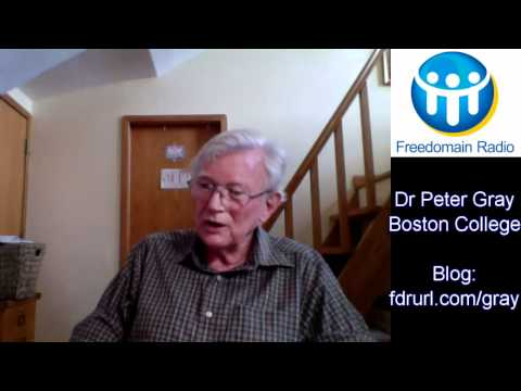 Peter Gray on Video Games