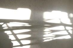 Mit dem Schatten verwoben