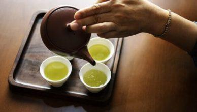 Grüner Tee stärkt das Immunsystem und hilft beim abnehmen