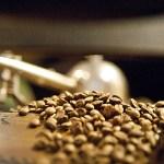 Kaffeebohnen_Bohne