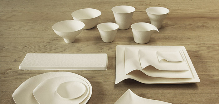 crockery-biodegradable