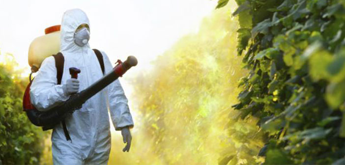 There is an important sector fears for the consequences of certain practices carried out in conventional agriculture, as the use of chemical pesticides.