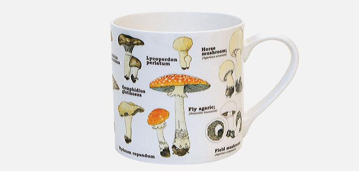tasse en porcelaine, espèces ecologie Hongo.