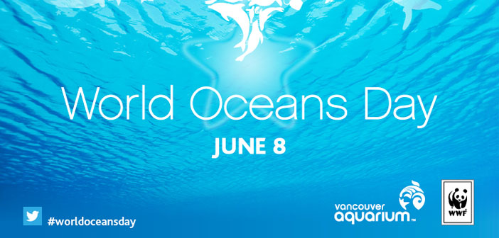 To end, our proposed social action. World Oceans Day is celebrated 8 June since the United Nations General Assembly would recognize 2009 the importance of the oceans for the planet's health.