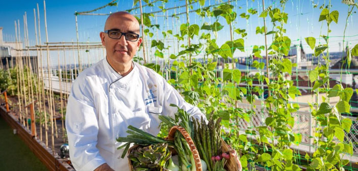 """""""More and more customers are looking for restaurants with quality products, and we offer our vegetables"""" Javier has Librero, Chef del Hotel Wellington, the first restaurant with own garden of Madrid, located on a roof."""