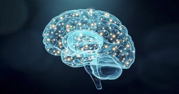 Estudios que confirman que la neurociencia aplicada a cartas y menús mejora las ventas de los restaurantes