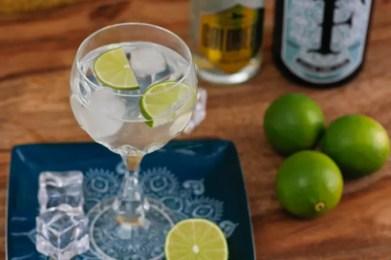 Gin Tonic Rezept Limette Gurke Zitrone