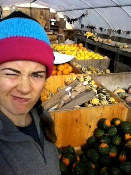 Packing various organic squashes