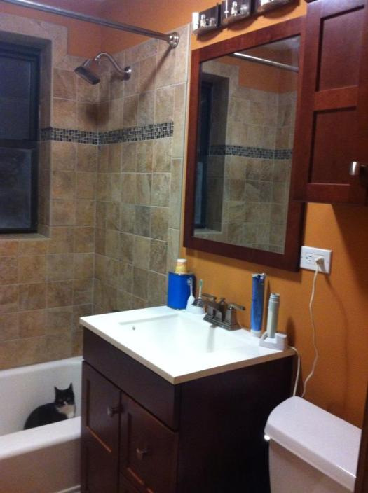 Bathroom Remodeling Sink Downers Grove