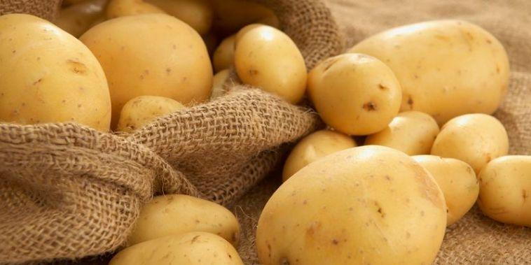 boiled-potatoes