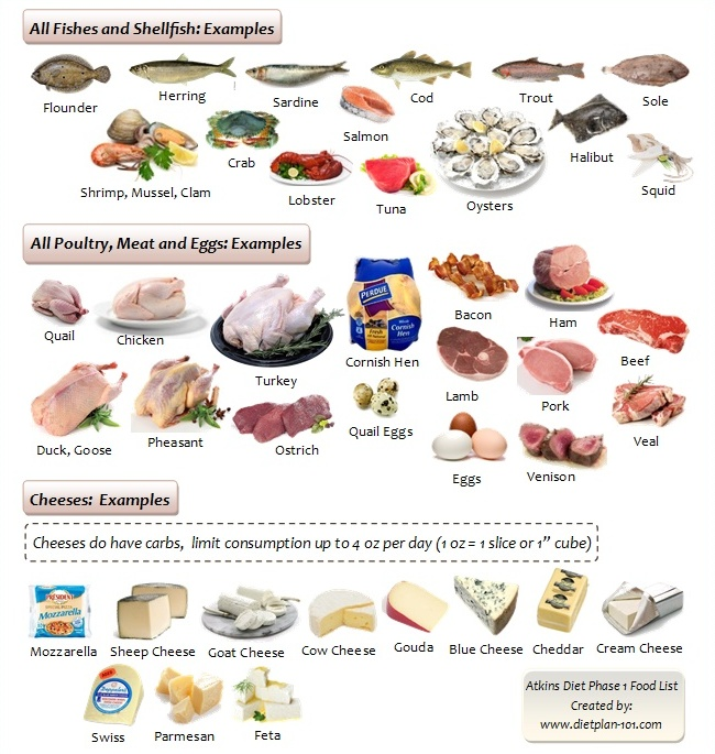 Atkins Diet Phase  Food List Nuts