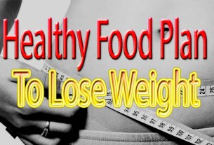 healthy food plan to lose weight