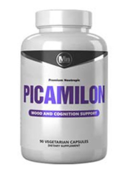 Picamilon Nootropic