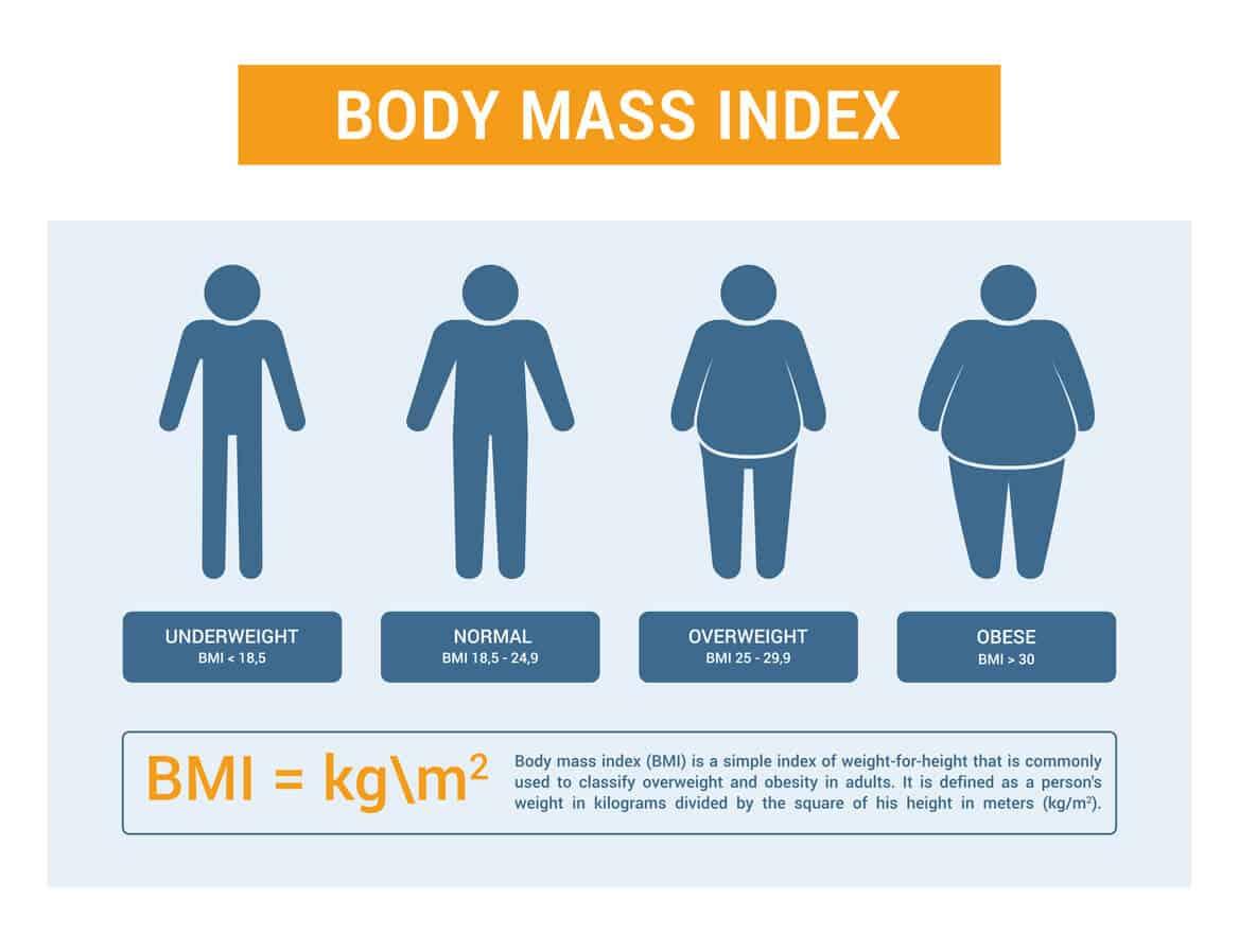 Bmi Chart And Bmi Calculator Update
