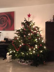 kerstboom rust