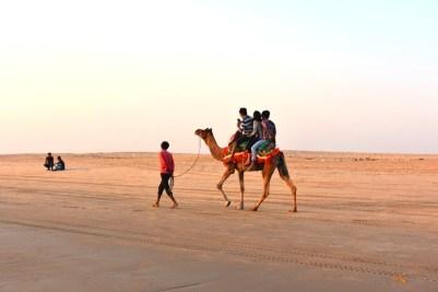 Camel ride, Mandvi