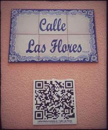 calle_flores