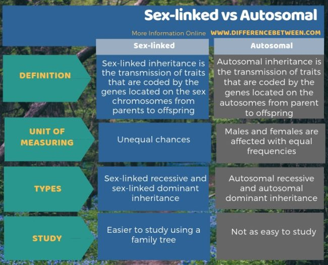Difference Between Sex-linked and Autosomal in Tabular Form