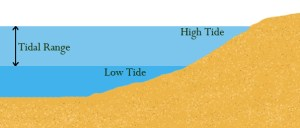 Difference Between Tides and Waves