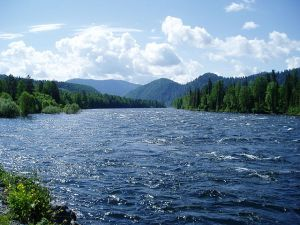 Stream vs River