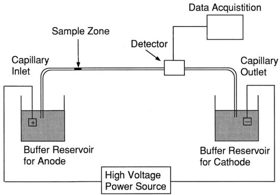 Key Difference - Capillary Electrophoresis vs Gel Electrophoresis