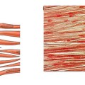Difference Between Striated Non Striated and Cardiac Muscles_Figure 02